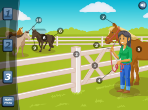Interactive modules show the basics of handling your horse, and anticipating the behavior of others.